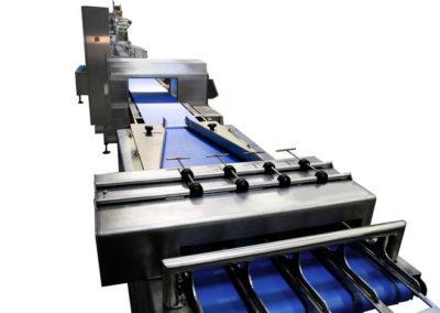 Mise au pas de barquettes Fine Spect 1 400x284 - Contrôles en fin de production