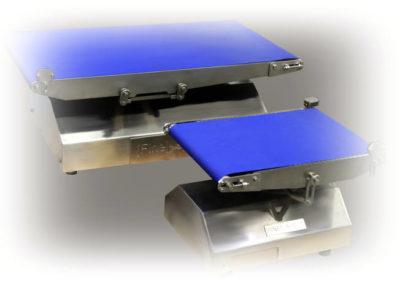 Tapis de controle de poids hygiénique 400x284 - Tapis de pesage